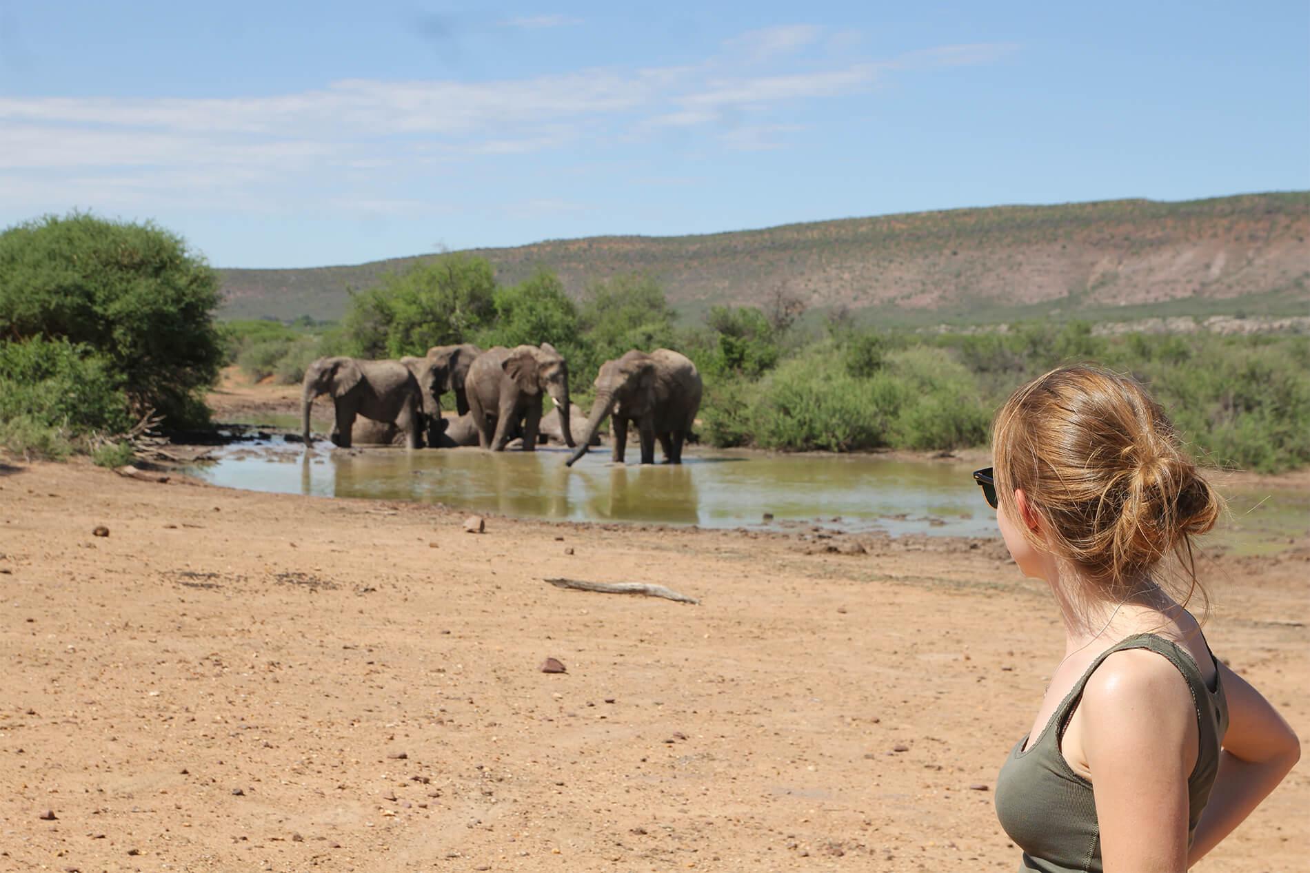 namibia free range khomas highland hunting en